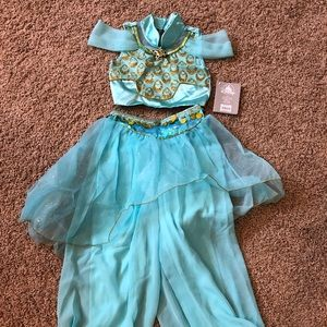 Disney Princess Jasmine Costume (NWT)